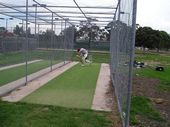tn_cricket-022.jpg